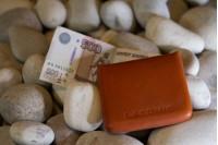 LACONIC SHELL Slim Minimal Leather Wallet