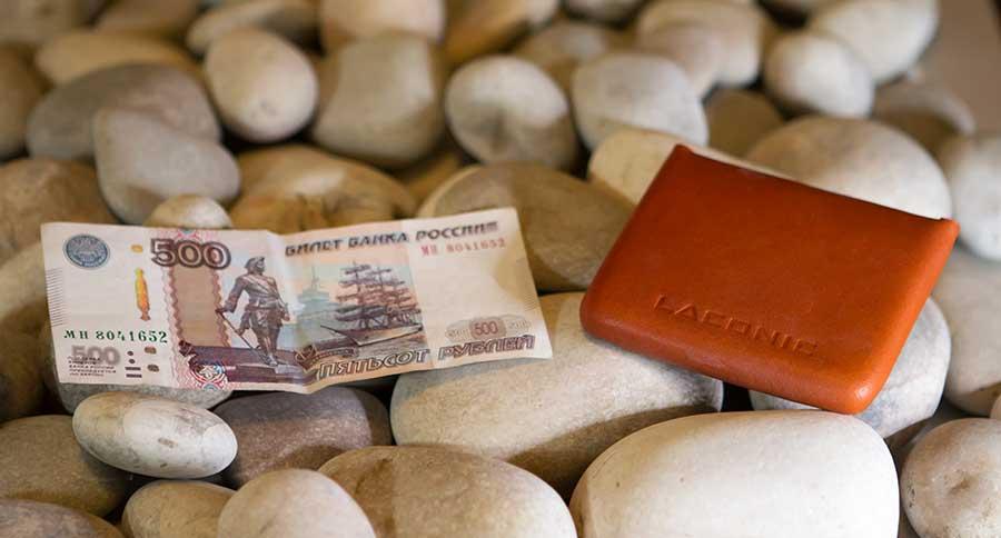 Компактный бумажник для купюр и монет